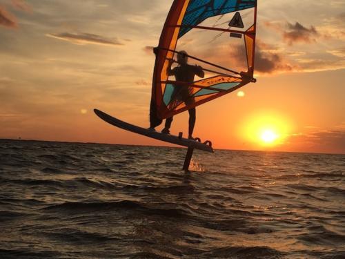 sunset foil jaybird 922